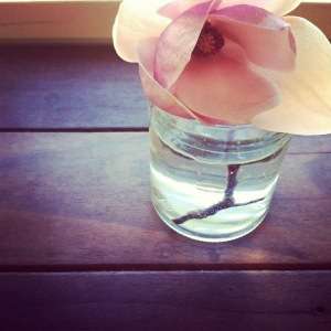 Magnolia in a Mason Jar